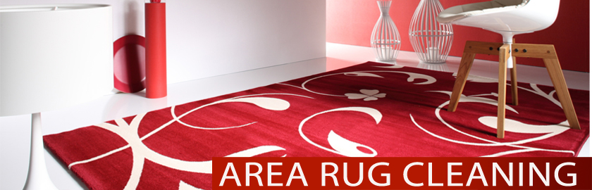 Area Rug Cleaning Burlington Carpet Cleaning Experts